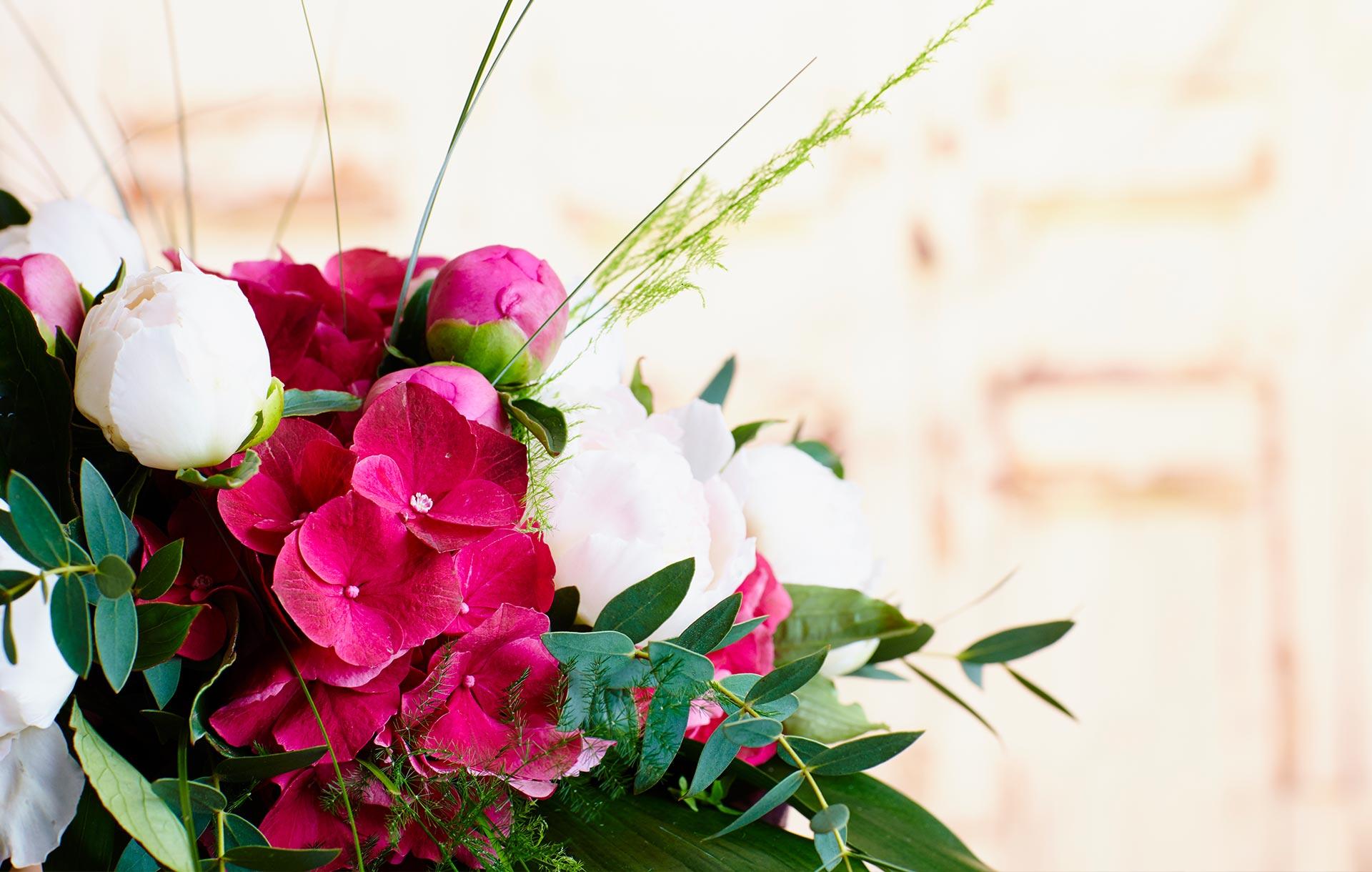 <strong>Com cuidar les plantes</strong><br>Consells per allargar al màxim la vida de les plantes
